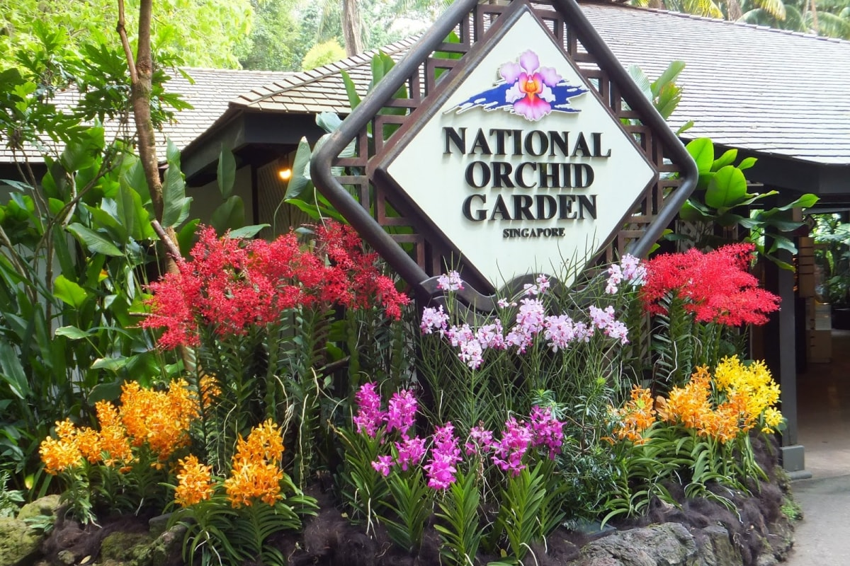 National Orchid Garden Tour